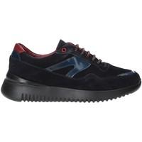 Zapatos Hombre Zapatillas bajas Exton 335 Azul