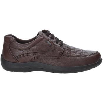 Zapatos Hombre Zapatillas bajas Enval 4233511 Marrón