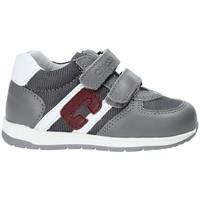 Zapatos Niños Zapatillas bajas Chicco 01062484000000 Gris
