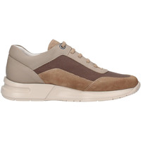 Zapatos Hombre Zapatillas bajas CallagHan 91311 Beige