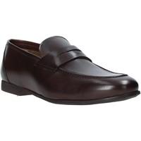 Zapatos Hombre Mocasín Rogers CAR01 Marrón