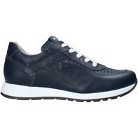 Zapatos Niños Zapatillas bajas NeroGiardini E033810M Azul
