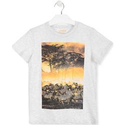 textil Niños Camisetas manga corta Losan 013-1017AL Blanco