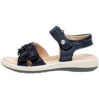 Zapatos Niña Sandalias Naturino 0502724 04 Azul