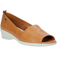 Zapatos Mujer Bailarinas-manoletinas Valleverde 41141 Marrón