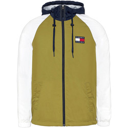 textil Hombre Sudaderas Tommy Jeans DM0DM08096 Verde