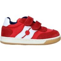Zapatos Niños Zapatillas bajas Falcotto 2014666 01 Rojo