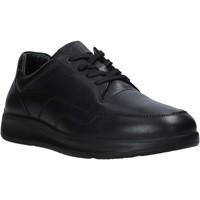Zapatos Hombre Zapatillas bajas Grunland SC2955 Negro