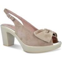 Zapatos Mujer Sandalias Pitillos 2901 Gris