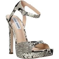 Zapatos Mujer Sandalias Steve Madden SMSLUV-GLDSNK Oro