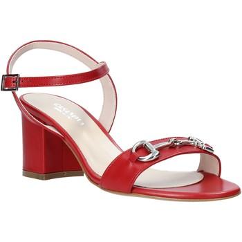 Zapatos Mujer Zapatos de tacón Casanova LUNT Rojo