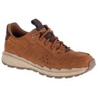 Zapatos Hombre Zapatillas bajas Caterpillar Startify LO WP marrón