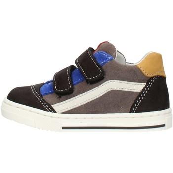 Zapatos Niño Zapatillas bajas Balocchi 602211 Multicolor