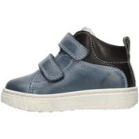 Zapatos Niño Zapatillas bajas Balocchi 601729 Azul