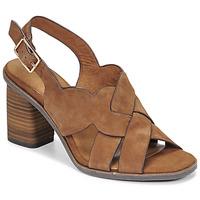 Zapatos Mujer Sandalias Tamaris NOAMY Marrón