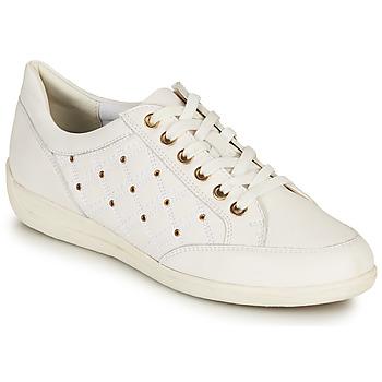 Zapatos Mujer Zapatillas bajas Geox D MYRIA H Blanco / Oro