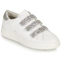 Zapatos Mujer Zapatillas bajas Geox D PONTOISE C Blanco / Plata