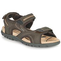 Zapatos Hombre Sandalias de deporte Geox UOMO SANDAL STRADA D Marrón / Beige