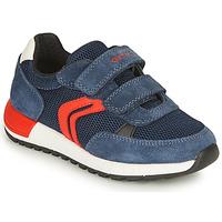 Zapatos Niño Zapatillas bajas Geox ALBEN BOY Marino / Rojo