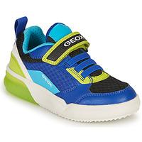 Zapatos Niño Zapatillas bajas Geox GRAYJAY BOY Azul / Lima