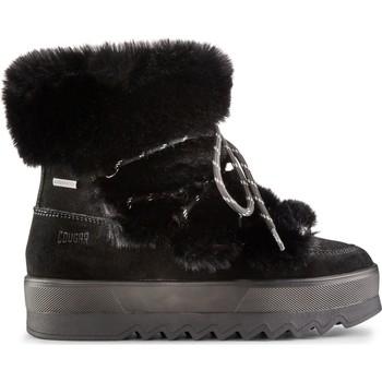 Zapatos Mujer Botines Cougar Vanity Suede 38