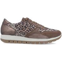 Zapatos Mujer Zapatillas bajas Imac 608260 Beige