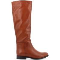 Zapatos Mujer Botas urbanas Elisa Lanci 518-B100 Otros