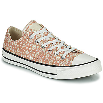 Zapatos Mujer Zapatillas bajas Converse CHUCK TAYLOR ALL STAR CANVAS BRODERIE OX Beige
