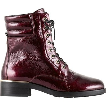Zapatos Mujer Botines Högl Mejor chico bordo Red