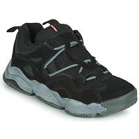 Zapatos Hombre Zapatillas bajas Globe OPTION EVO Negro