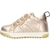 Zapatos Niño Zapatillas bajas Balducci - Polacchino oro CSP4105 ORO