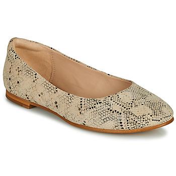 Zapatos Mujer Bailarinas-manoletinas Clarks GRACE PIPER Beige / Serpiente