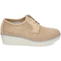 Zapatos Mujer Derbie & Richelieu Kennebec 7001 P. CUADRADITO Marrón
