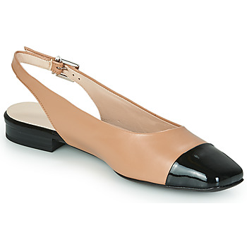 Zapatos Mujer Bailarinas-manoletinas Peter Kaiser KILLEEN Nude / Negro