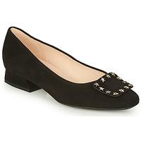 Zapatos Mujer Bailarinas-manoletinas Peter Kaiser ZWONIZ Negro