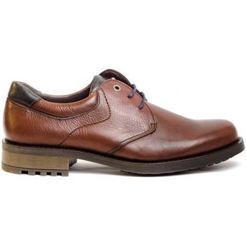 Zapatos Hombre Derbie & Richelieu Kennebec 8158 Marrón