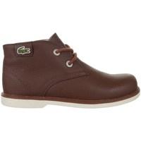 Zapatos Niños Botas de caña baja Lacoste Sherbrook HI SB Spc Marrón