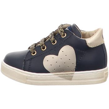 Zapatos Niña Zapatillas bajas Falcotto - Polacchino blu HEART-2C09 BLU