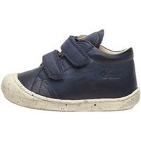 Zapatos Niño Zapatillas altas Naturino - Polacchino blu COCOON VL-0C02 BLU