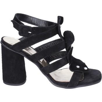 Zapatos Mujer Sandalias Sergio Cimadamore Sandalias Gamuza Negro