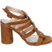 Zapatos Mujer Sandalias Sergio Cimadamore Sandalias Gamuza marrón