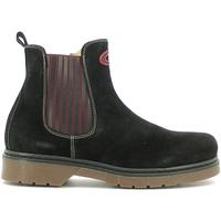 Zapatos Niños Botas de caña baja Alberto Guardiani GK22806G Negro