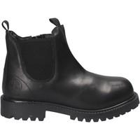 Zapatos Niños Botas de caña baja Primigi 8131 Negro