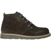 Zapatos Niños Botas de caña baja Primigi 4420122 Verde