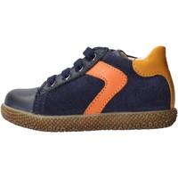 Zapatos Niño Zapatillas bajas Falcotto - Polacchino blu/arancione MISU-1C25 BLU