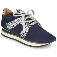 Zapatos Mujer Zapatillas bajas Adige XAN V4 KOI SILVER Azul