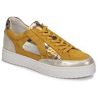 Zapatos Mujer Zapatillas bajas Regard HARY2 Amarillo