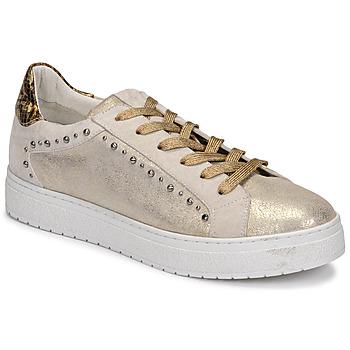 Zapatos Mujer Zapatillas bajas Regard HAVRES Oro