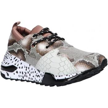 Zapatos Mujer Multideporte Steve Madden CLIFF SM11000185 Marr?n