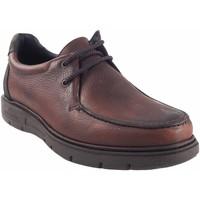 Zapatos Hombre Mocasín Riverty Zapato caballero  640 marron Marrón